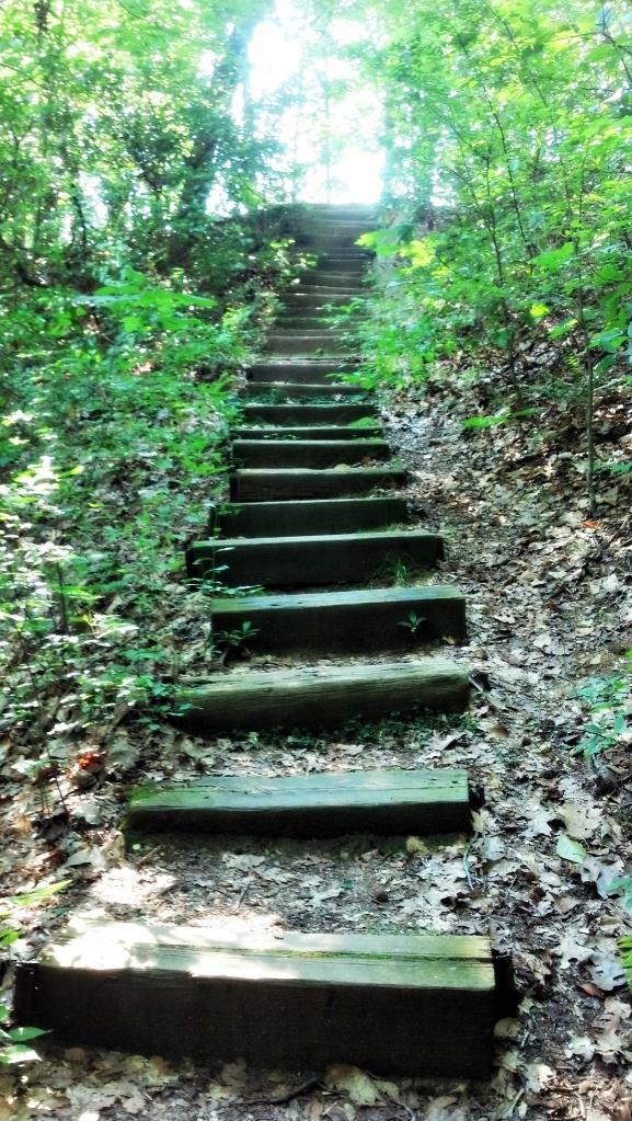 Wooded Stairway