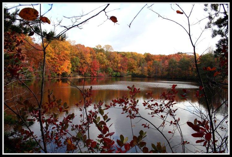 Fall in Virginia
