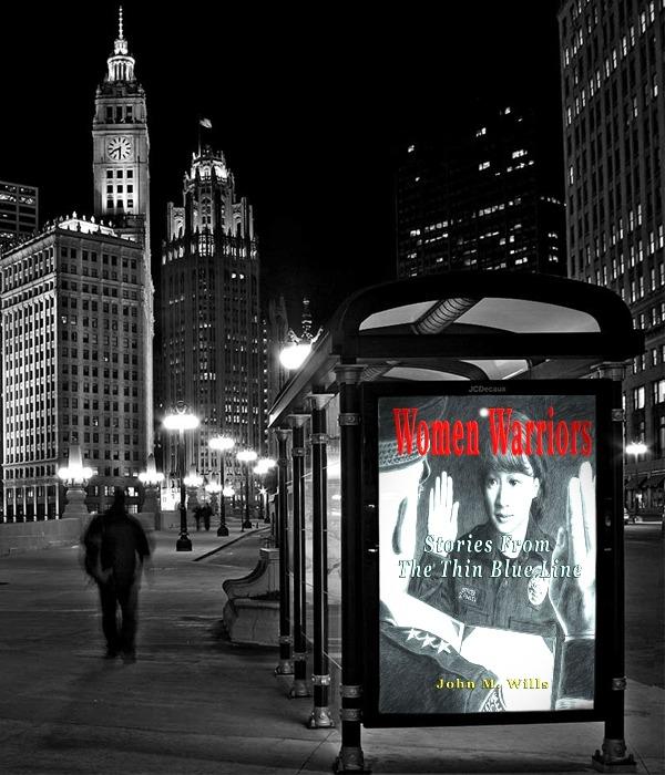 Women Warriors book on Chicago bus stop